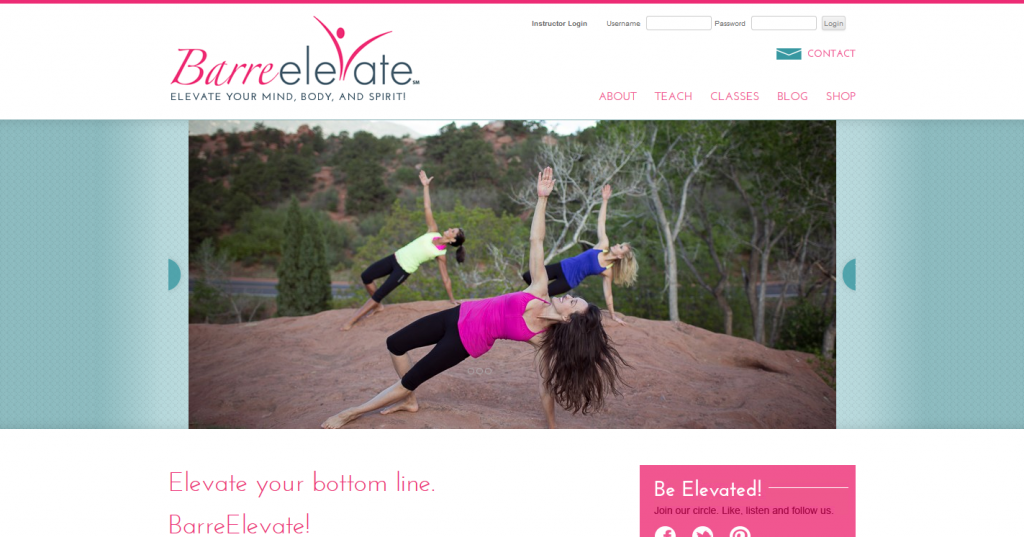 Barre Elevate. Lauri Ann Stricker LLC