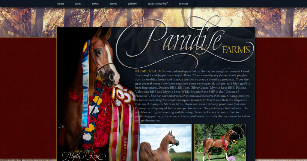 Paradise Arabians