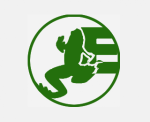 Evolve Solutions Logo